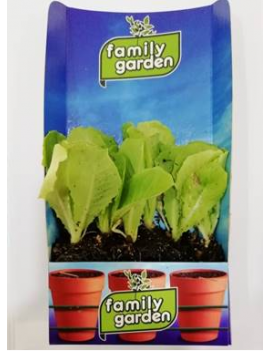 Fresanas zanahoria de colores planta natural envío a domicilio