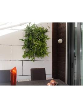Jardín Vertical 15 Plantas