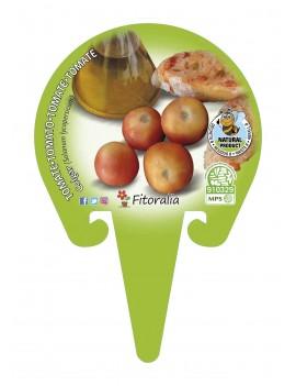 Fresanas Tomate Colgar plantón en maceta de 10,5 cm. de diámetro