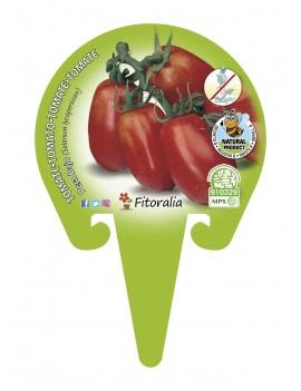 Fresanas Tomate Pera Mata Alta plantón en maceta de 10,5 cm. de diámetro