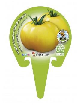 Fresanas Tomate Racimo Amarillo plantón en maceta de 10,5 cm. de diámetro