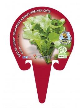Fresanas Grelo plantel ecológico en maceta de 10,5 cm.