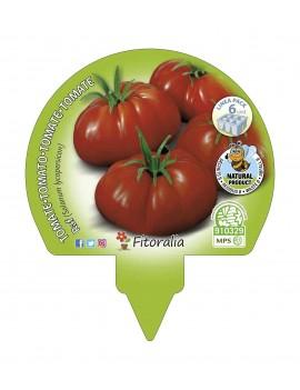 Pack 6 uds. Tomate Raf...