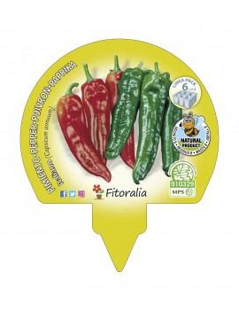 Fresanas Pimiento de Italiano plantón ecológico pack 6 unidades