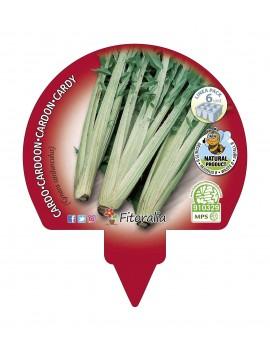 Fresanas Cardo plantón ecológico pack 6 unidades 54x43 mm. de diámetro