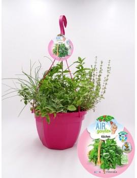 Fresanas AirGarden Kitchen Fitoralia, tres plantas de hierbas aromáticas