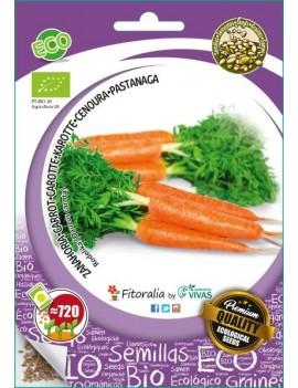 """Fresanas, semillas ecológicas de Zanahoria """"Rodelika"""""""