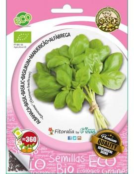 Fresanas, semillas eco de albahaca genovese
