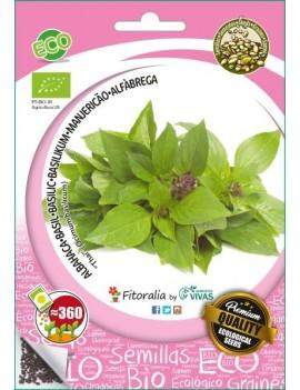 """Fresanas, semillas ecológicas de Albahaca De Tailandia """"Thai"""""""