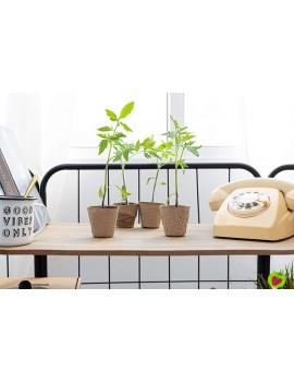 Fresanas set de cultivo de lechugas y tomates de 35 piezas