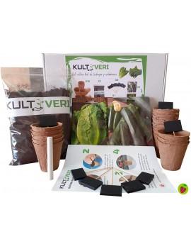 Fresanas kit cultivo de lechugas y calabacines kultiveri