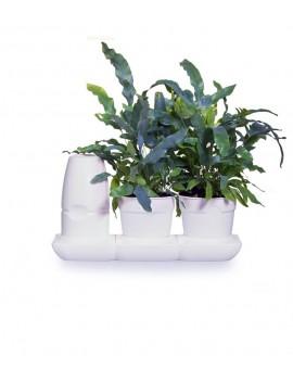 Fresanas Minigarden sistema de cultivo Basic S pots para 2 plantas