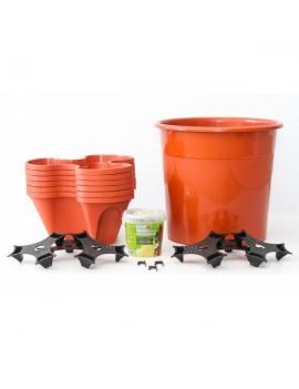 Kit de cultivo doméstico básico Terracota