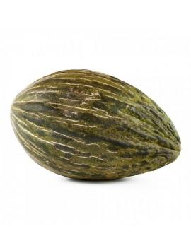 Fresanas melón piel de sapo planta ecológica y natural envío a domicilio