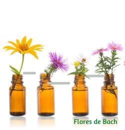 Fresanas Flores de Bach