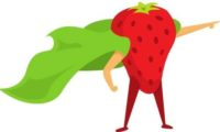 Fresanas plantas de fresas ecológicas a raíz desnuda propiedades antioxidantes
