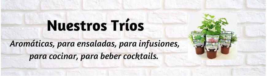 Fresanas®: Nuestros Tríos